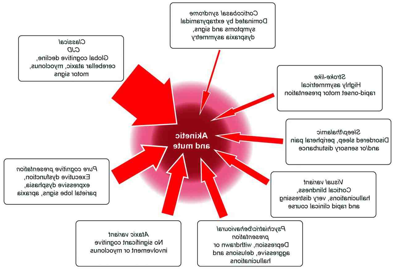 Maladie de Creutzfeld-Jacob : Symptômes, Causes, Traitement